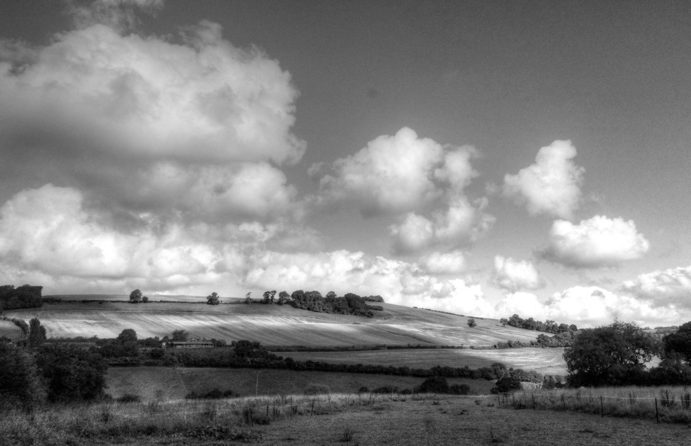 photoblog image NEAR WELLOW